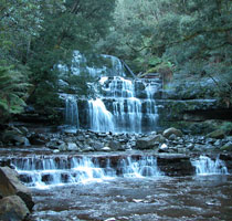 The stunning Liffey Falls, Northern Tasmania