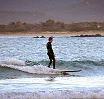 Surfing at Freer's Beach, Shearwater, Tasmania